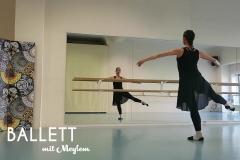 Meylem-Ballett_schrift